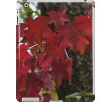 Autumn's annual fashion show iPad Case/Skin