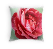 Mr. Lincoln Rose well dressed Throw Pillow