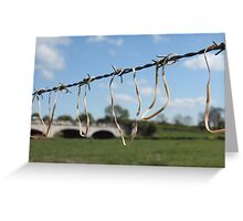 Affected Nature Greeting Card
