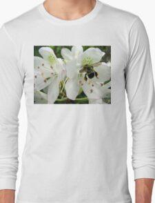 Pollen Packing Bumble Bee Long Sleeve T-Shirt