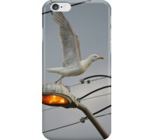 Seagull Taking Off | Center Moriches, New York  iPhone Case/Skin
