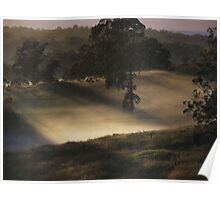 """Mist on Canvas"" Poster"