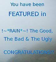 RAIN feature Banner by Linda Press