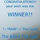 Rain Winner Banner by Linda Press
