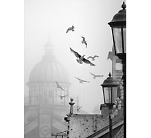 seagulls on eastbourne pier in the mist Photographic Print