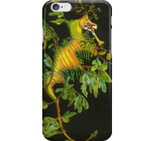 Weedy Sea Dragon iPhone Case/Skin