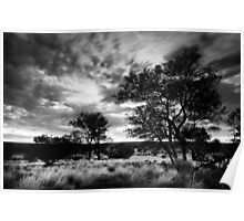 Outback Black Poster