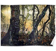 Dewey Dawn Wandering In Wistful Woods Poster