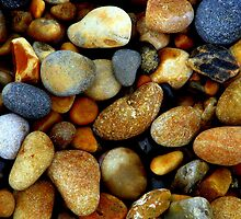 Pebbles by Elizabeth Kendall