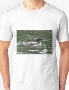 Loon with babies 2 T-Shirt