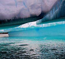 Iceberg by bvl1981