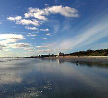 Blue Skies by Merice Ewart Marshall - LFA