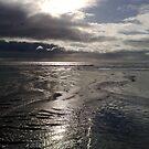Just before the storm by Merice  Ewart-Marshall - LFA