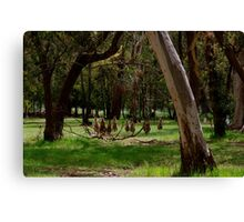 A Sunday Family Outing Canvas Print