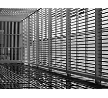 Caged In Photographic Print