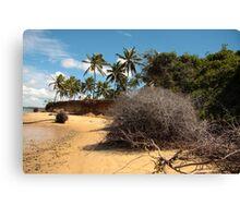 Lagoon Beach Canvas Print