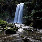 Hopetoun Falls by stjc