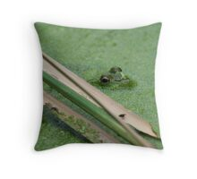 Frog Eyes are Watching Throw Pillow