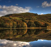Autumnal Reflections - Tecwyn Isaf, North Wales by Emma Wright