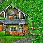 Farmer's Cottage by Daidalos