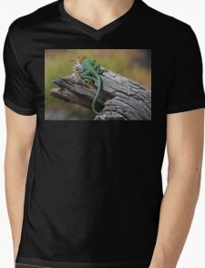 Collared Lizard Mens V-Neck T-Shirt