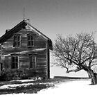 Abandon House with tree by alexa20