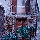 On The Corner in Gavigona Italy by Warren. A. Williams