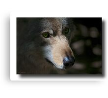 Lens test , specially for Canon users ! Canvas Print