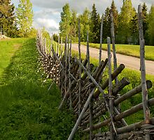 Fence by ilpo laurila