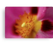 Paper Petals Canvas Print