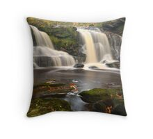 Water Ark Foss, Beck Hole, North Yorkshire Moors Throw Pillow