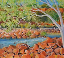 In the Gorge at Kalbarri by Gregory Pastoll