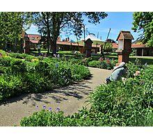 Walsingham Gardens Photographic Print