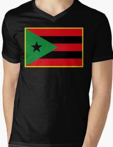 Afro Puerto Rican Flag Mens V-Neck T-Shirt