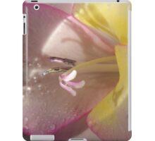 266 Iris 47 iPad Case/Skin