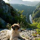 Sićevo Gorge by aleksandra15