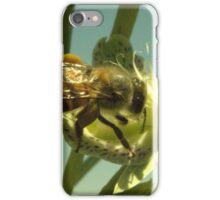270 Bumble Bee iPhone Case/Skin