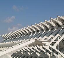 Modern building in Valencia, Spain by douwe