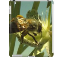 270 Bumble Bee iPad Case/Skin