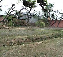 Babu Ram Panorama by Angie Spicer
