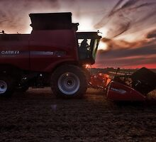 Sunset Harvesting by Steve Baird