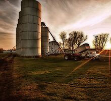 Harvest Sunset by Studio601