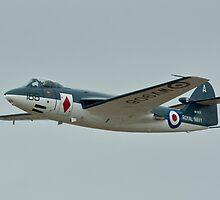 Hawker Seahawk FGA Mk6 by PhilEAF92