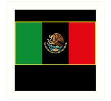 Afro Mexican Flag Art Print