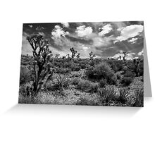 Joshua Tree Forest Greeting Card