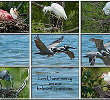 Lord, have mercy on our beloved Louisiana by Bonnie T.  Barry
