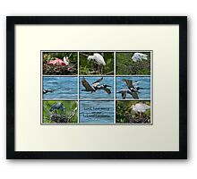 Lord, have mercy on our beloved Louisiana Framed Print