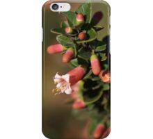 Australian Fuchsia iPhone Case/Skin