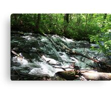 Lower Raleigh Falls Canvas Print