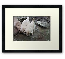First Water Ripples- 10 Framed Print